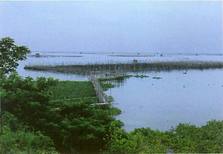 lago-bay.jpg